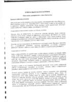 Správa nezávislého auditora